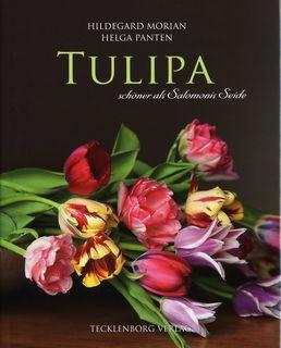 Tulipa von Helga Panten
